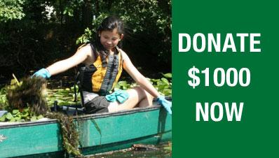 Donate-1000