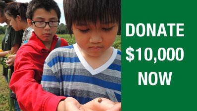 Donate-10000