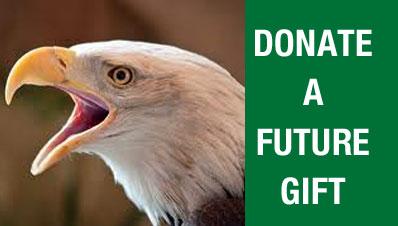 Donate-FUTURE
